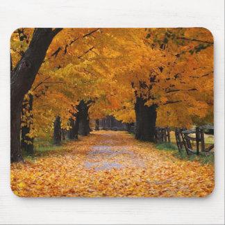 秋の懐旧の情の下で歩くこと マウスパッド