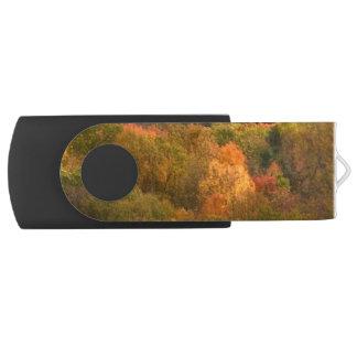 秋の抽象的な旋回装置USB 2.0の抜け目がないドライブ USBフラッシュドライブ