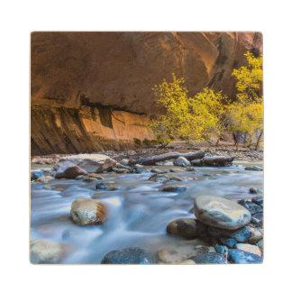 秋の新しい川の狭いところ ウッドコースター