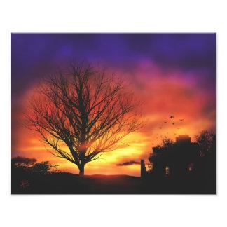 秋の日没の木 フォトプリント