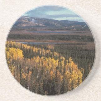 秋の景色の空中写真 コースター