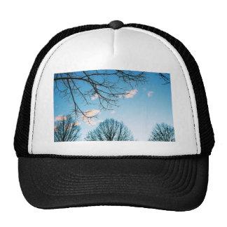 秋の木のスカイライン メッシュハット