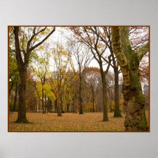 秋の木のプリントのニューヨークの景色ポスター ポスター