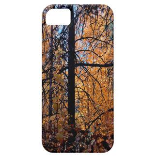 秋の木の深い iPhone SE/5/5s ケース