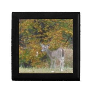 秋の木を持つBambiの若いシカ ギフトボックス