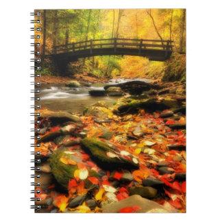 秋の木橋そして入り江 ノートブック