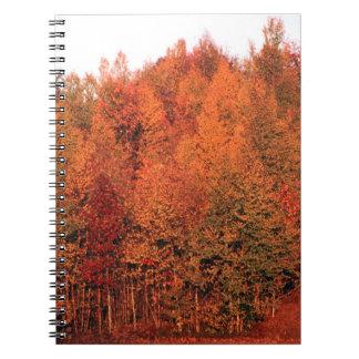 秋の木 ノートブック