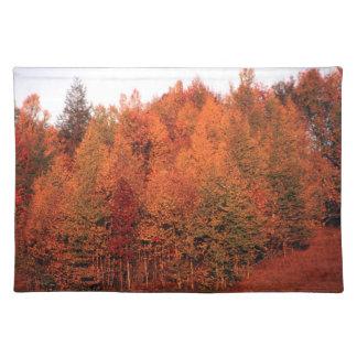 秋の木 ランチョンマット