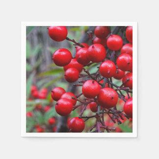 秋の果実 スタンダードカクテルナプキン