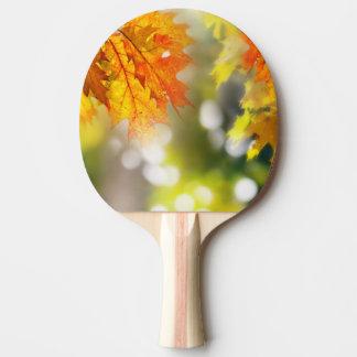 秋の森林の枝の葉 卓球ラケット