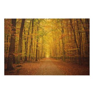 秋の森林の細道 ウッドウォールアート
