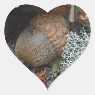 秋の森林床のドングリのきのこおよびコケ ハートシール