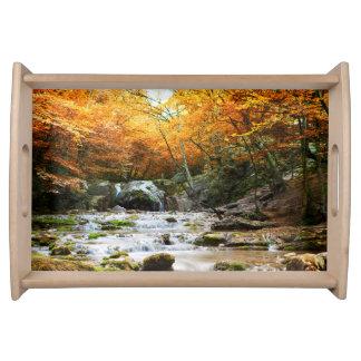 秋の森林滝のトレイ トレー