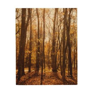 秋の森林 ウッドウォールアート