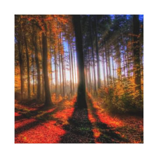 秋の森林 キャンバスプリント