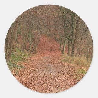 秋の森林 ラウンドシール