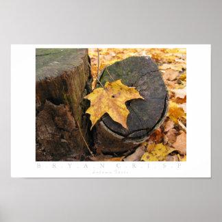 秋の残り ポスター