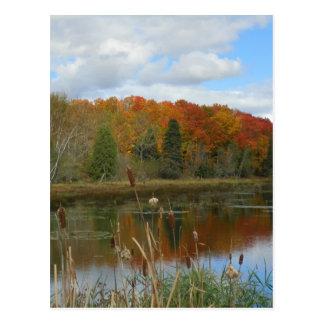秋の泥地 ポストカード