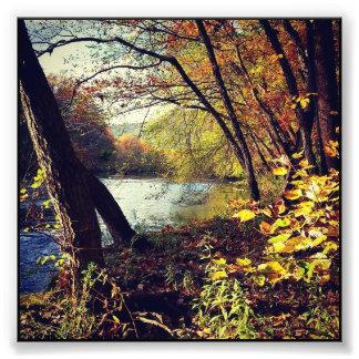 秋の流れ フォトプリント