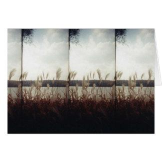 秋の海岸線 カード
