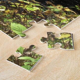 秋の滝のパズル ジグソーパズル