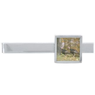 秋の男女のトルコの組の写真 銀色 ネクタイピン