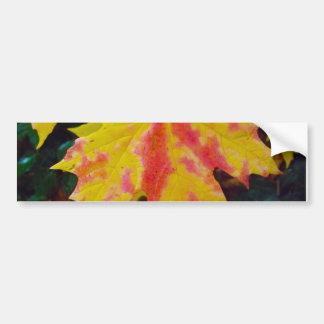秋の秋のカエデの葉 バンパーステッカー