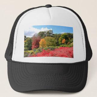 秋の素晴らしさ、アデレードの丘 キャップ