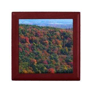 秋の自然の写真撮影のアパラチア山脈 ギフトボックス