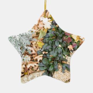 秋の花壇の平面図 セラミックオーナメント
