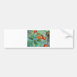 秋の花 バンパーステッカー