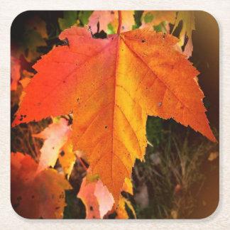 秋の葉のテーマのカスタムな正方形のコースター スクエアペーパーコースター