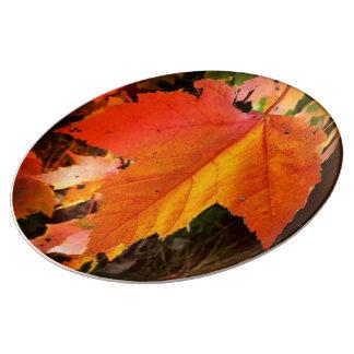 """秋の葉のテーマ10.75""""磁器皿 磁器プレート"""