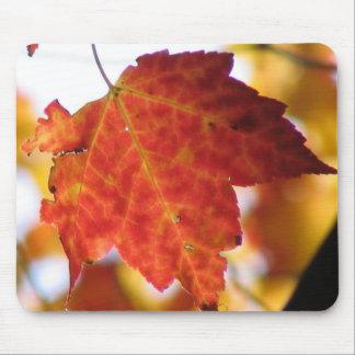 秋の葉 マウスパッド