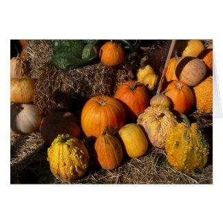 秋の豊富 カード