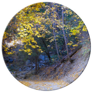 秋の道 磁器プレート
