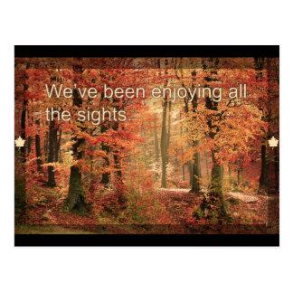 秋の郵便はがきを楽しむこと ポストカード