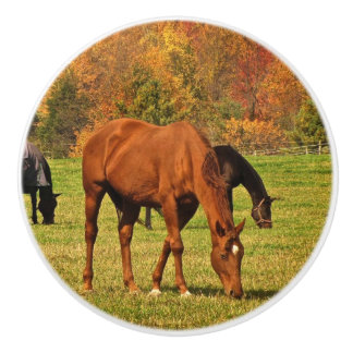秋の陶磁器のノブの馬 セラミックノブ