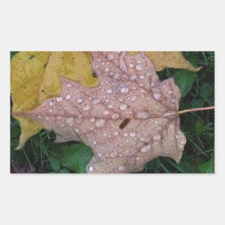 秋の雨滴 長方形シール