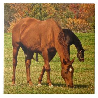 秋の馬のセラミックタイル タイル