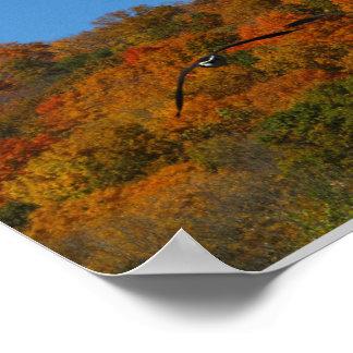 秋の鳥 ポスター