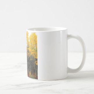 秋の《植物》アスペンおよび樺の木Denaliアラスカ コーヒーマグカップ