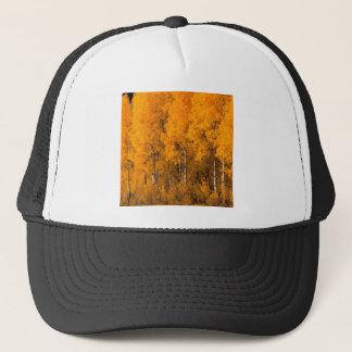 秋の《植物》アスペンの木モンタナ キャップ