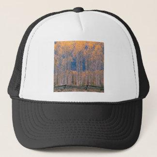 秋の《植物》アスペンの素晴らしさジャクソンホールワイオミング キャップ