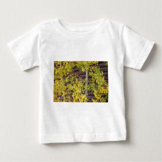 秋の《植物》アスペンの葉 ベビーTシャツ