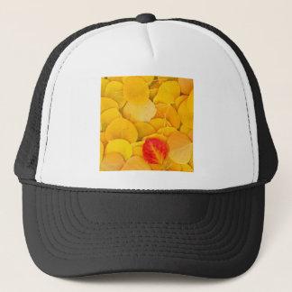 秋の《植物》アスペンは東の山脈カリフォルニアを去ります キャップ
