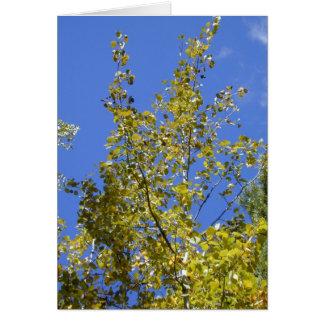 秋の《植物》アスペンはIIカードを去ります カード
