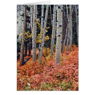 秋の《植物》アスペン カード