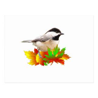 秋の《鳥》アメリカゴガラ ポストカード