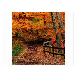 秋のMccormickの入り江の州立公園インディアナ ポストカード